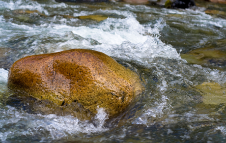 a rock in a stream